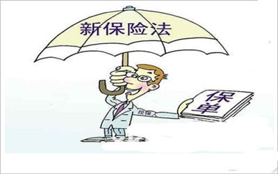 保险单质押的法律分析