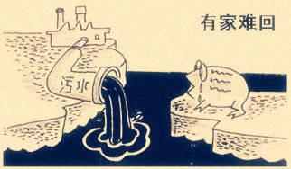 环境污染侵权责任的形式