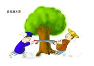 盗伐林木罪和滥伐林木罪的区别