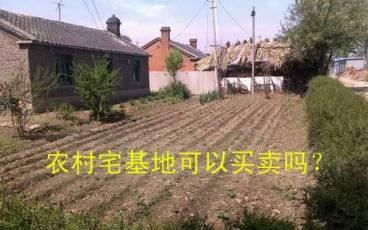 农村宅基地可以买卖吗?