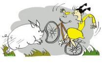 骑摩托车撞到猪是交通事故吗?