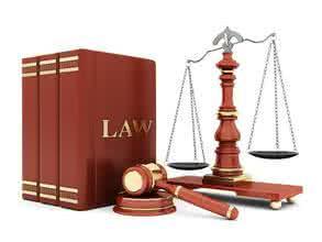 法律条文条款项目