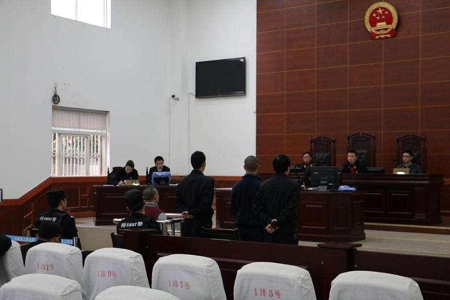 2017证人出庭作证申请书