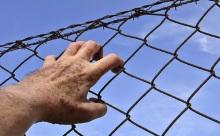 共同犯罪中的主从犯哪个量刑重?