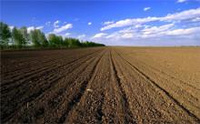 关于农村土地承包法的具体内容