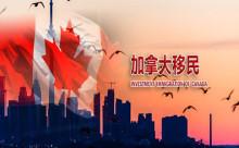 如何挑选加拿大投资移民服务机构