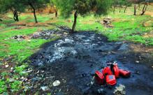 在我国犯环境污染罪判几年?