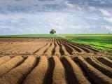 土地使用权出让流程怎么走
