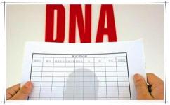 办户籍做DNA亲子鉴定费用多少?...