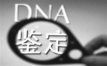 中国大陆居民移民亲子鉴定流程