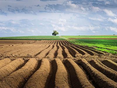 农村集体土地使用权评估如何进行