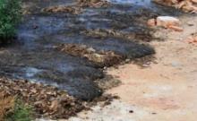 环境污染处罚流程是什么