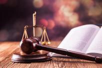 上诉期间调庭审笔录可以调阅吗