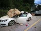 车辆事故保险公司理赔程序如何进行