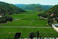 农民退出土地政策补偿标准是什么