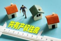 共有产权住房申请条件有哪些