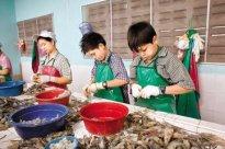 劳动法对使用未成年工的具体规定是什么