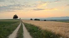 政府强制征收农民土地农民该怎么办