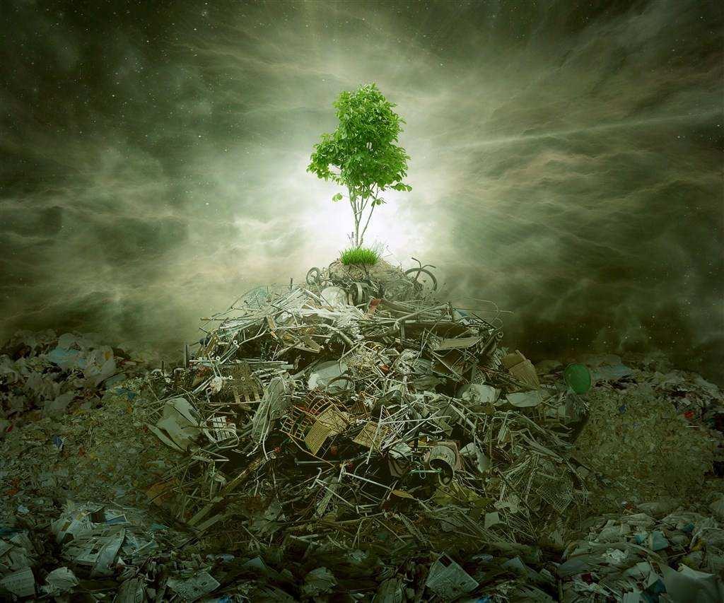环境污染包括哪些类型