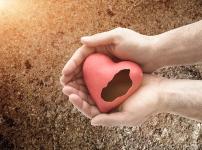 哺乳期协议离婚的手续及流程...