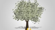 前期物业管理费的规定是怎么样的