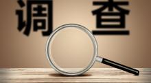 最新资产评估报告书范本