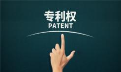 专利就是知识产权吗...