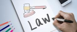 专利制度的特点包括哪些...