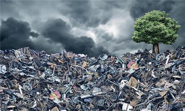 环境污染责任保险制度有哪些
