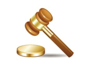 行政诉讼中的自认规则