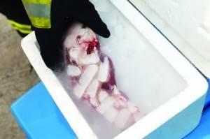 消防官兵现场试验:冰淇淋月饼盒里的干冰,很危险!