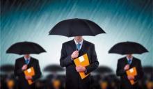 保险合同的犹豫期一般多久