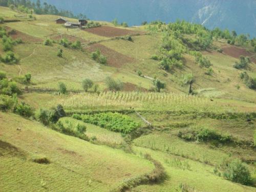 土地承包经营权的设立流程怎么走