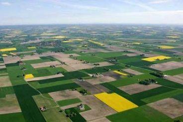 土地承包权和经营权有什么区别