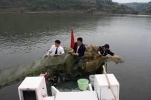 非法捕捞水产品罪拘留多久