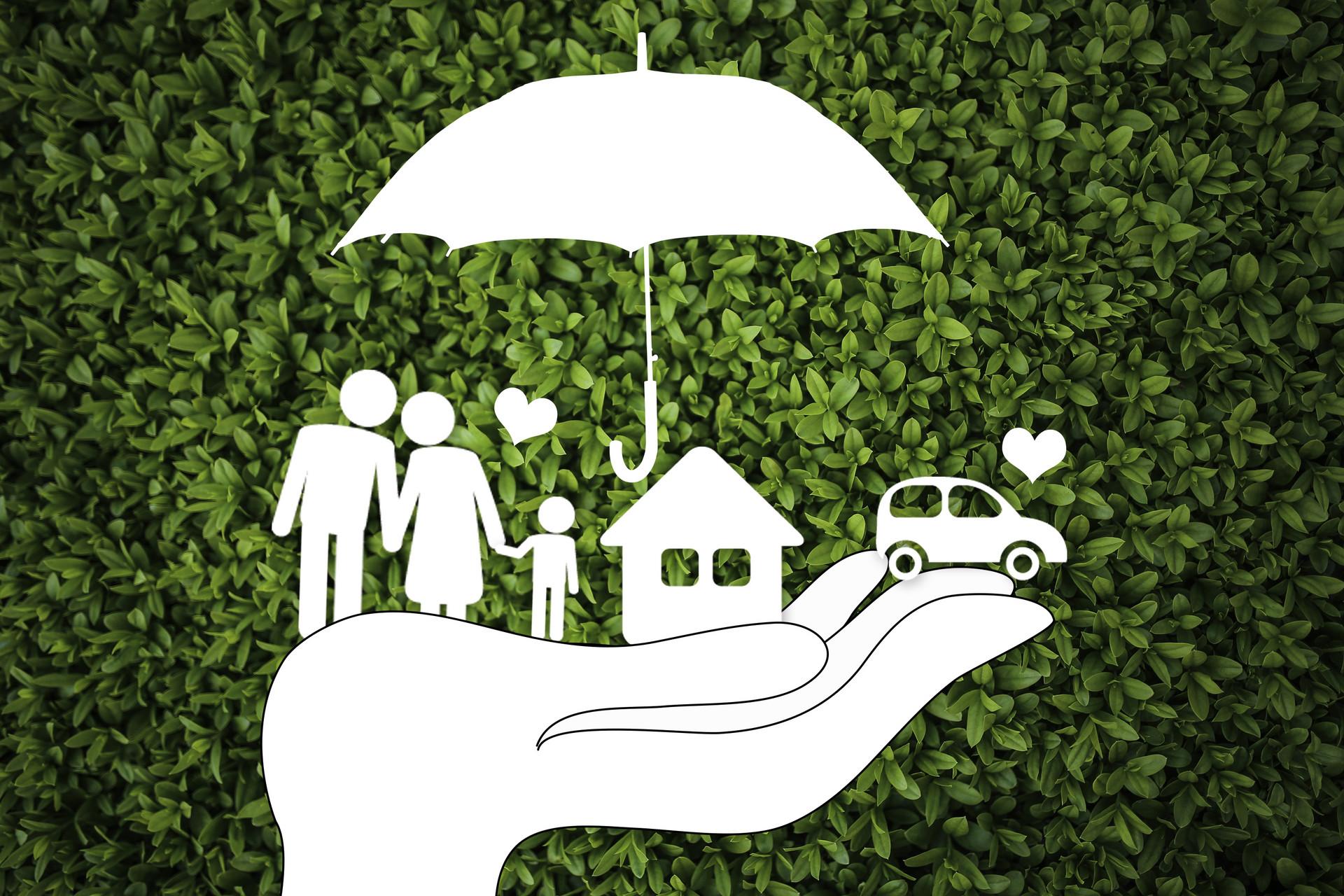 家庭共有财产分割有哪些原则?分割方式有哪些?