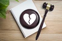 什么情况下可以申请强制离婚