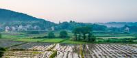 最新农村土地承包合同怎么写