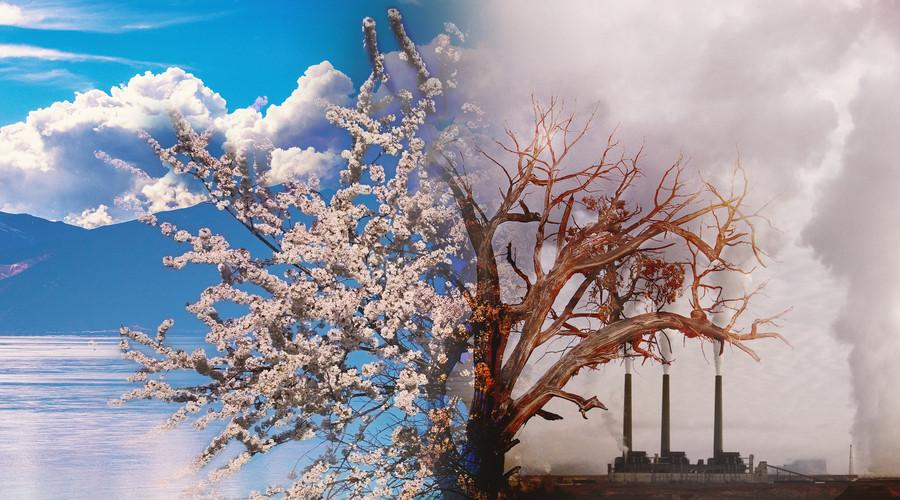 环境污染侵权的免责事由有哪些