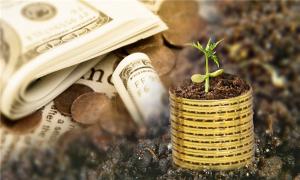 融资公司现在合法吗